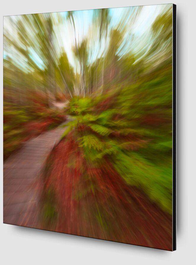 L'escalier en forêt de Céline Pivoine Eyes Zoom Alu Dibond Image