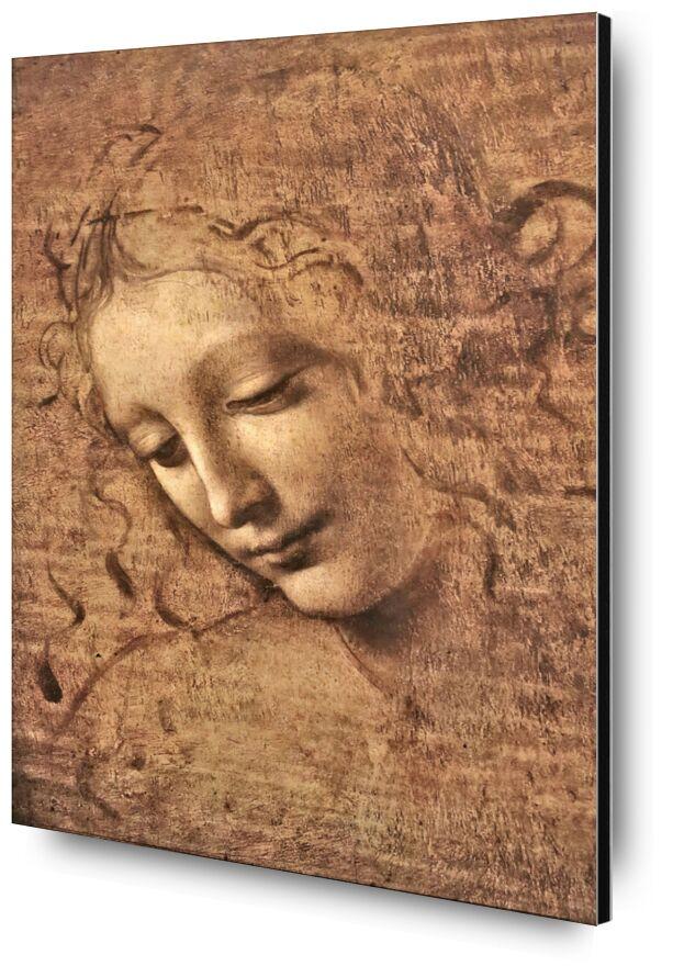 La Scapigliata - Léonard de Vinci de AUX BEAUX-ARTS, Prodi Art, femme, portrait, Leonard de Vinci, dessin au crayon