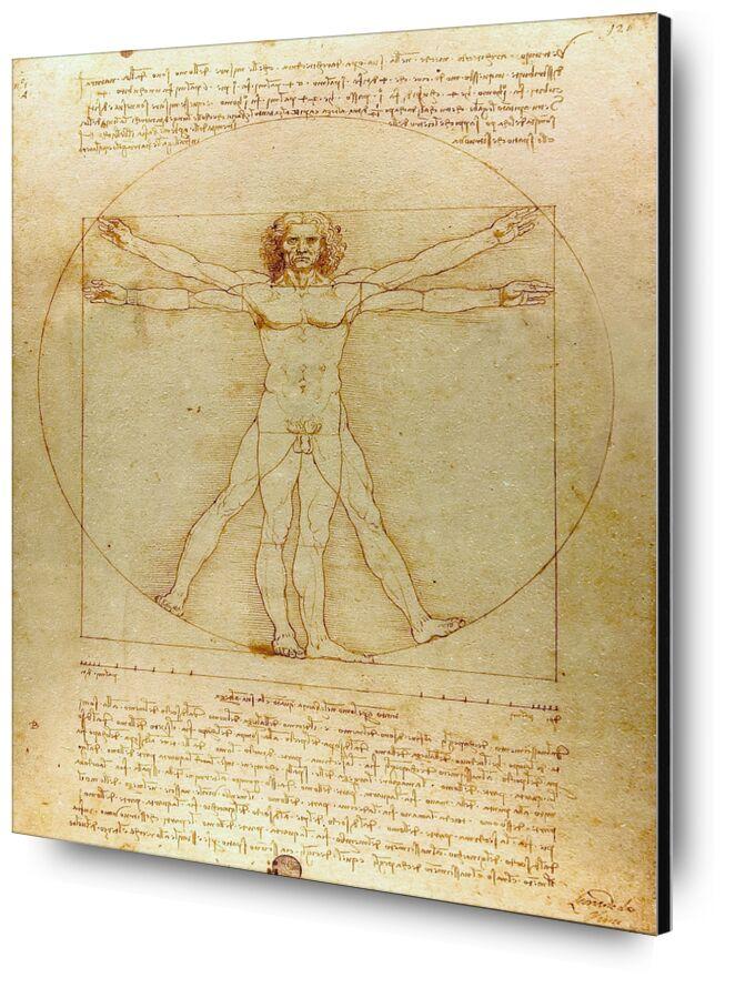 Vitruvian Man - Leonardo da Vinci desde AUX BEAUX-ARTS, Prodi Art, hombre, naturaleza, De Vinci, dibujo, lápiz, Leonard da vinci, geometría