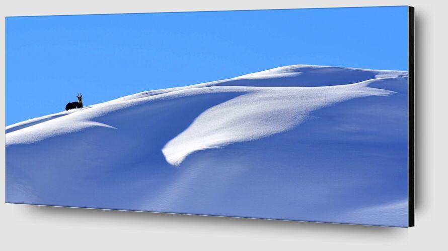 Douce d'Esprit de Romain DOUCELIN Zoom Alu Dibond Image