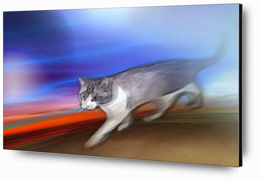 Twix de Adam da Silva, Prodi Art, couleurs, rouge, bleu, animal, Chat, animal de compagnie, art numérique