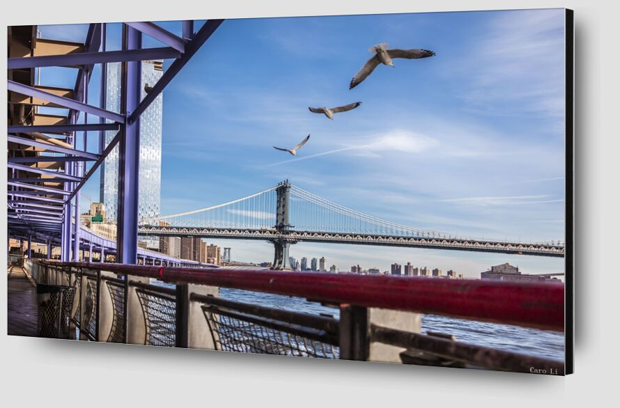Manhattan Bridge from Caro Li Zoom Alu Dibond Image
