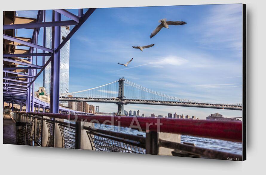 Manhattan Bridge from Caro Li Zoom Alu Dibond Image