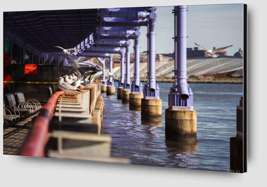 Under The bridge from Caro Li Zoom Alu Dibond Image