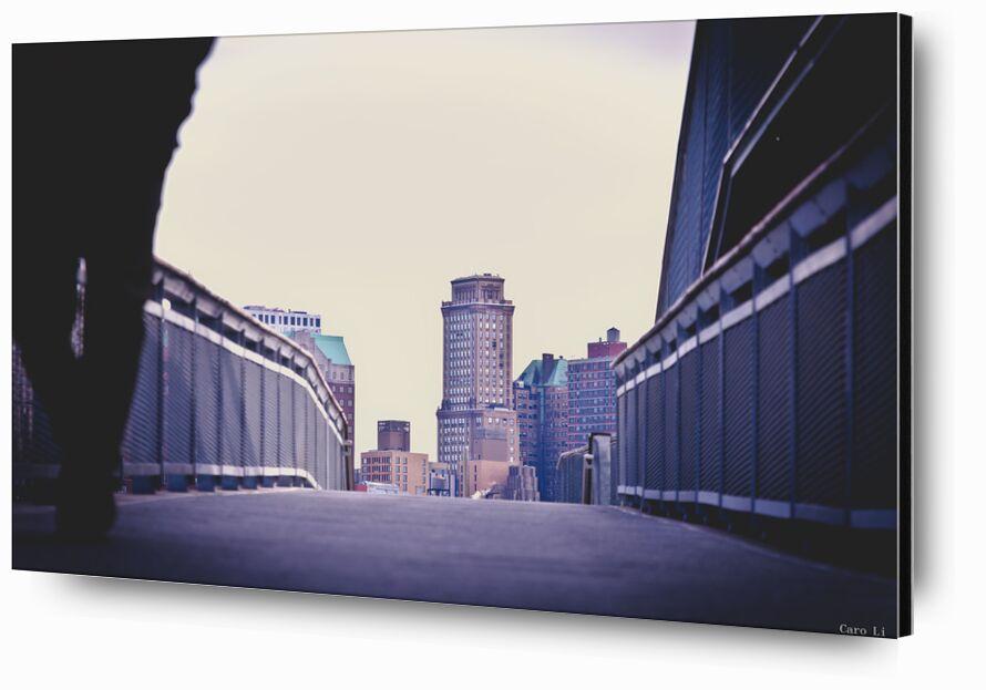 Brooklyn from Caro Li, Prodi Art, Brooklyn, NY, New-York, USA, United States, bridge, photography, Photography, Dear Li