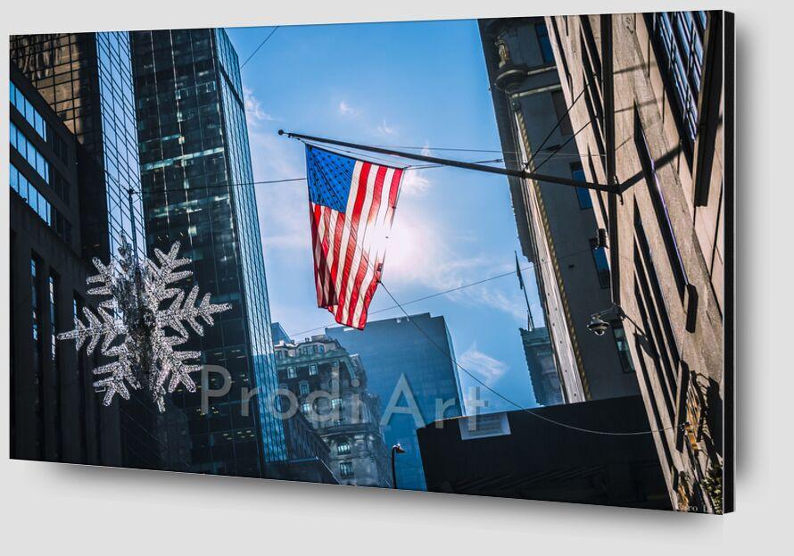 Le drapeau de Caro Li Zoom Alu Dibond Image