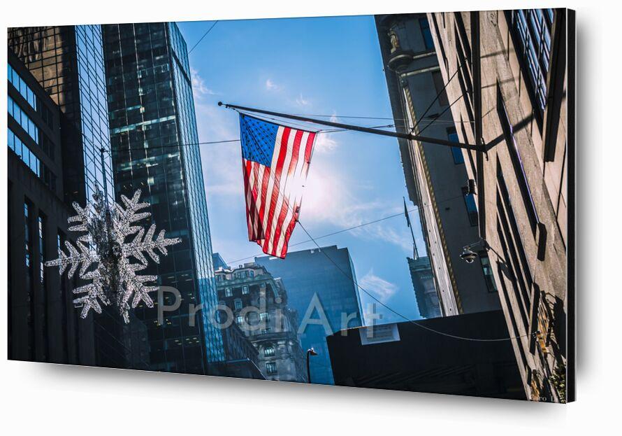 Le drapeau de Caro Li, Prodi Art, New York, NY, USA, états-unis, Cher Li, drapeau, drapeau