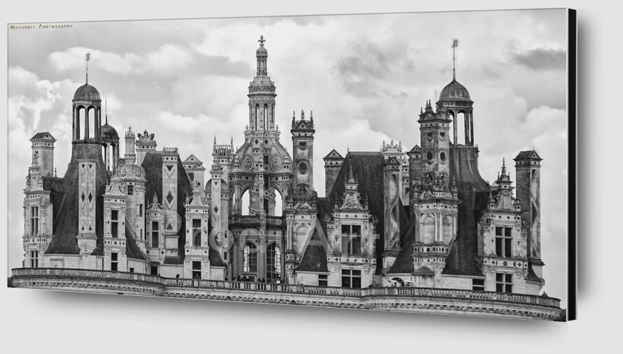 His Majesty Chambord from Mayanoff Photography Zoom Alu Dibond Image