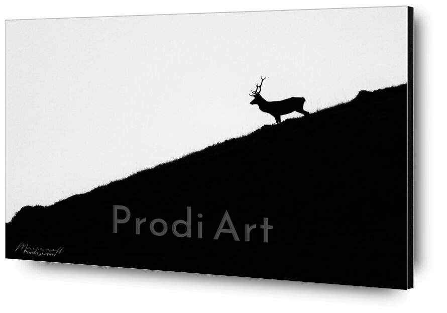 Night getaway from Mayanoff Photography, Prodi Art, deer, night, dusk, mountains, crest, animal, wildlife, deer, night, dusk, mountain, wildlife, ridge