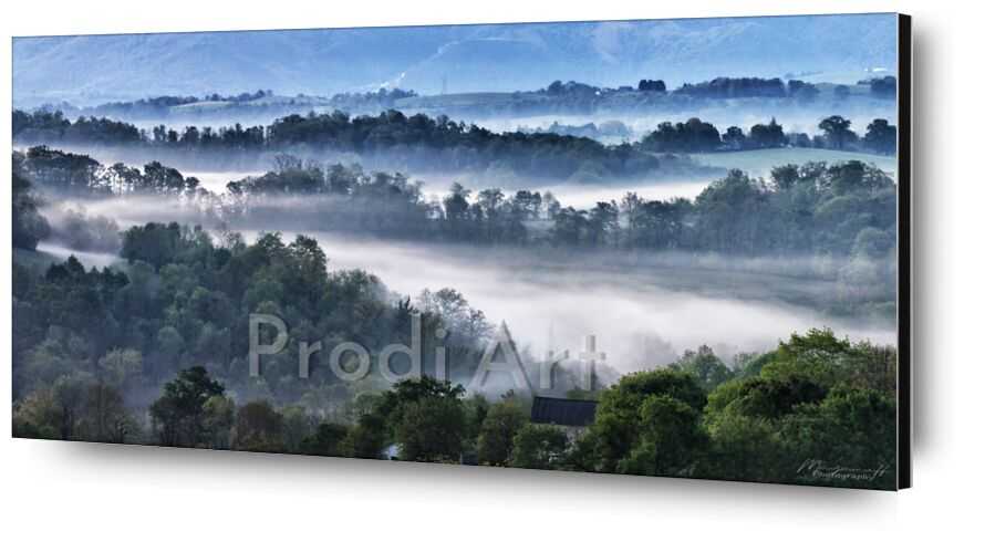 """Foggy morning from Mayanoff Photography, Prodi Art, <font style=""""vertical-align: inherit;""""><, <font style=""""vertical-align: inherit;""""><, <font style=""""vertical-align: inherit;""""><, <font style=""""vertical-align: inherit;""""><, <font style=""""vertical-align: inherit;""""><, <font style=""""vertical-align: inherit;""""><, <font style=""""vertical-align: inherit;""""><, <font style=""""vertical-align: inherit;""""><"""