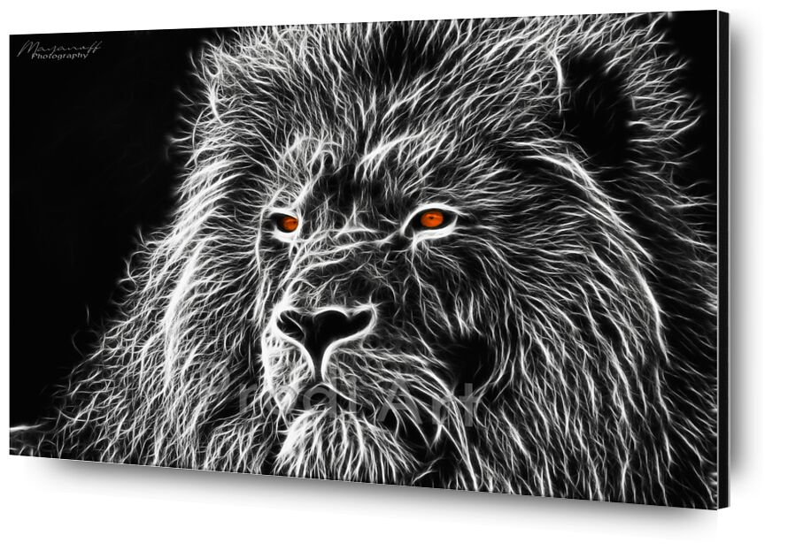 Feline gaze from Mayanoff Photography, Prodi Art, Lion, feline, painting, fractalius, black White, monochrome, animal, regard, feline, painting, Black & White, gaze