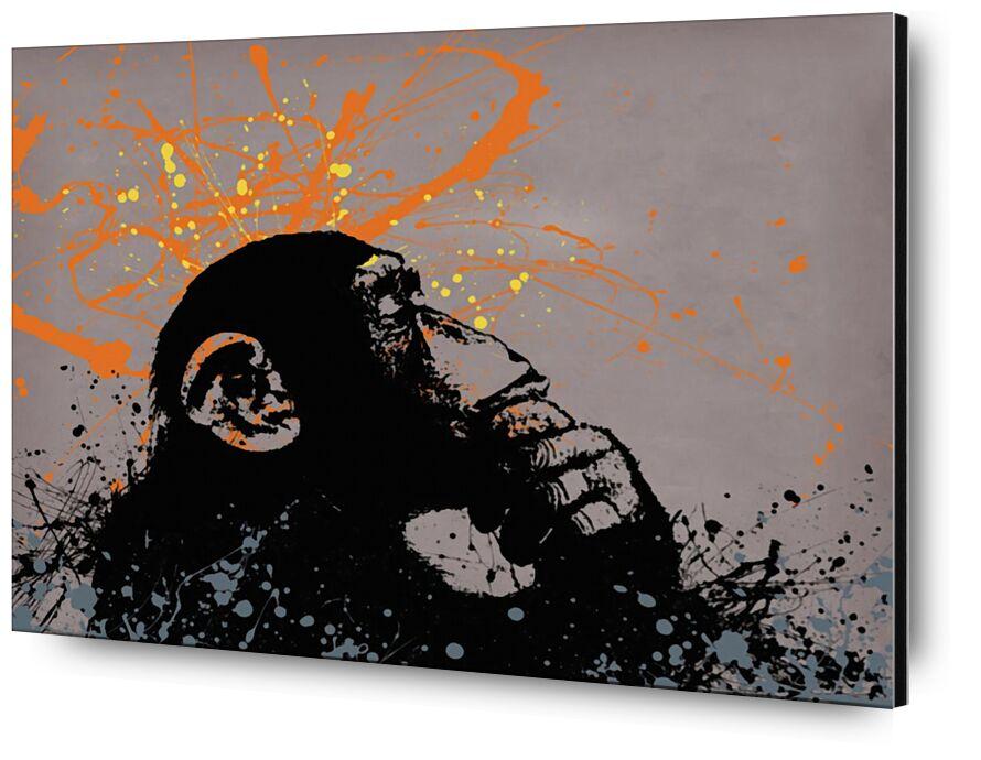 Le Singe Pensant - BANKSY de AUX BEAUX-ARTS, Prodi Art, art de rue, graffiti, Banksy, singe, graphique