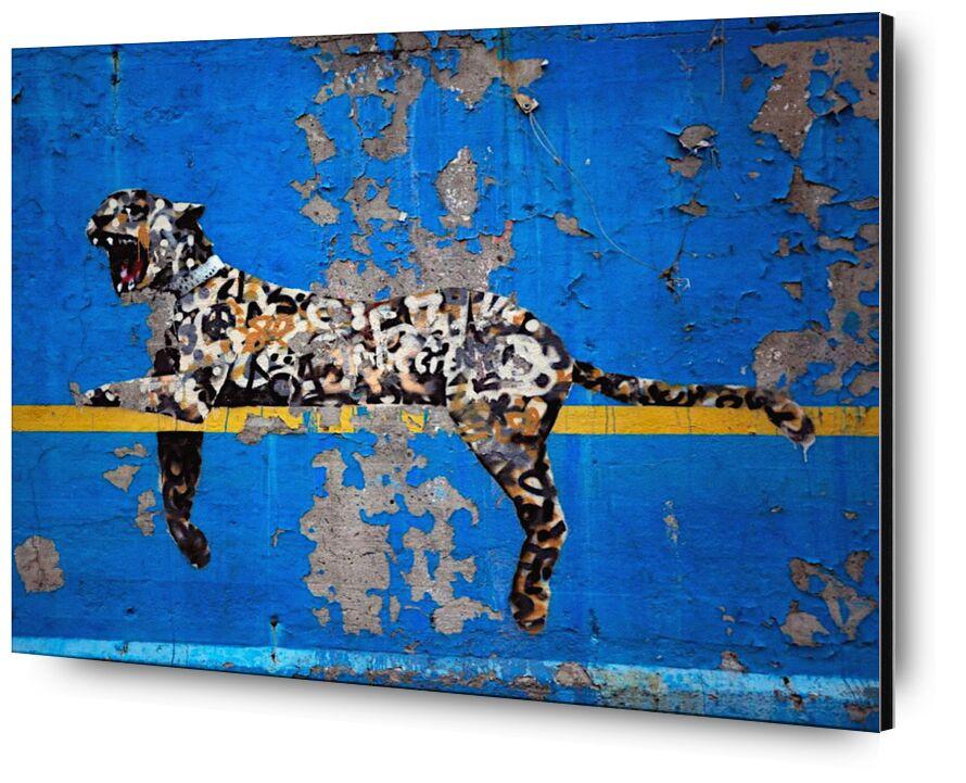 Bronx Zoo - BANKSY from AUX BEAUX-ARTS, Prodi Art, banksy, zoo, New-York, leopard, street art, blue, Bronx
