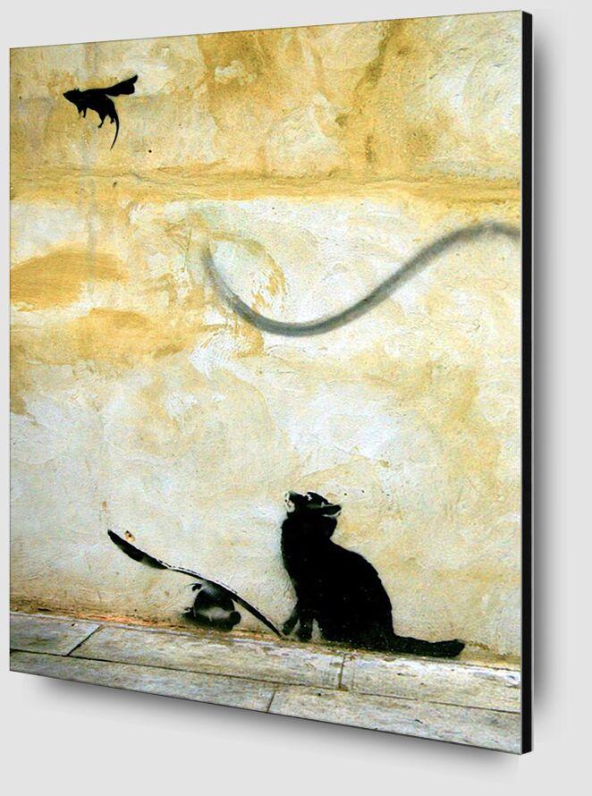 Cat - BANKSY desde AUX BEAUX-ARTS Zoom Alu Dibond Image