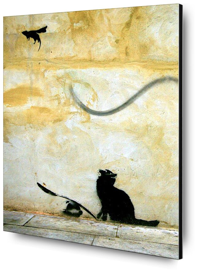 Cat - BANKSY desde AUX BEAUX-ARTS, Prodi Art, pintada, Banksy, gato, arte callejero