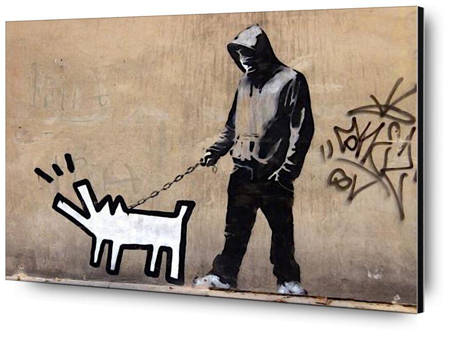Dog - BANKSY from AUX BEAUX-ARTS, Prodi Art, graffiti, dog, street art, banksy