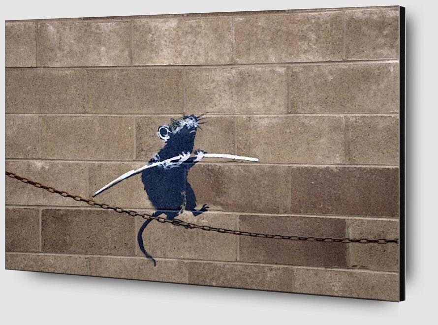 Tightrope - BANKSY desde AUX BEAUX-ARTS Zoom Alu Dibond Image
