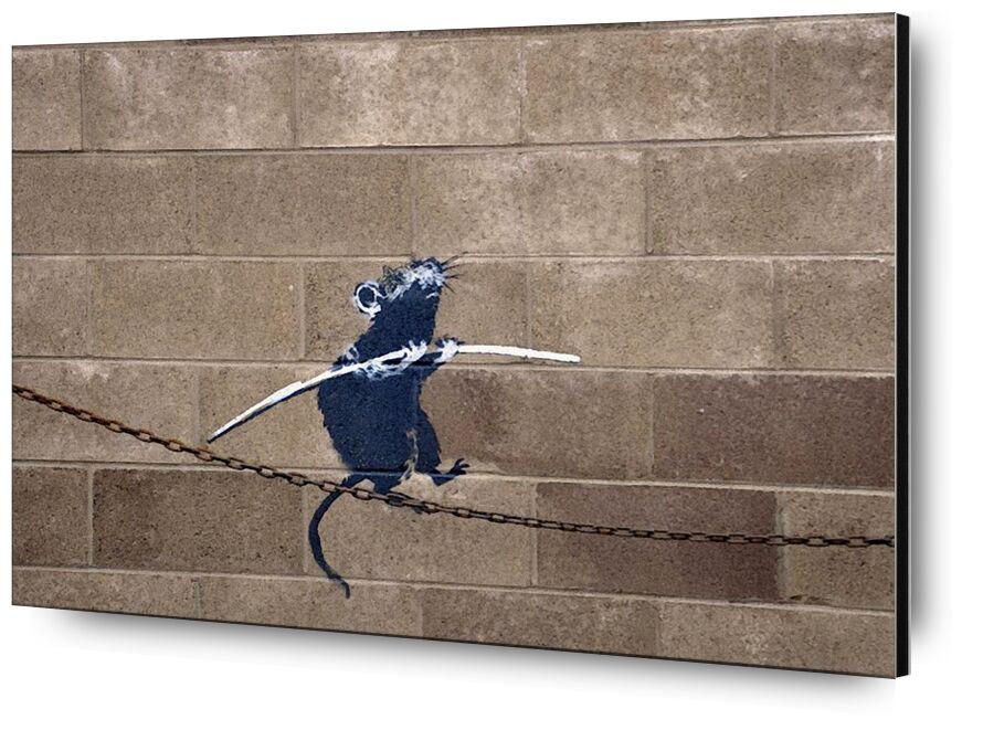 Tightrope - BANKSY desde AUX BEAUX-ARTS, Prodi Art, rata, pintada, arte callejero, Banksy