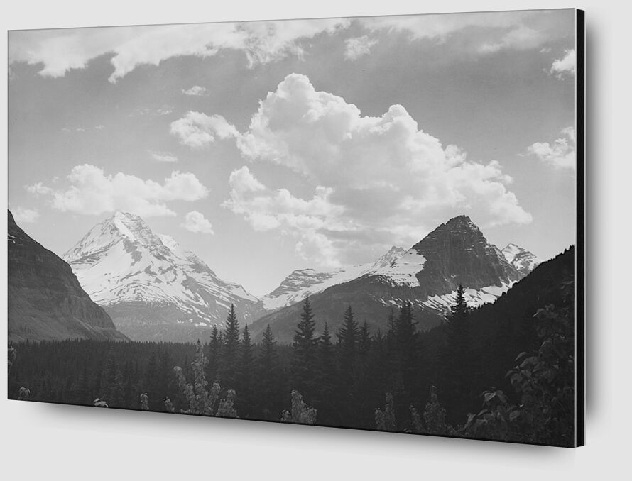 Looking Across Forest To Mountains And Clouds - Ansel Adams desde AUX BEAUX-ARTS Zoom Alu Dibond Image