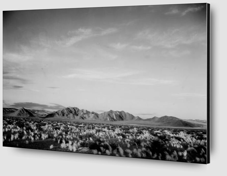 View Of Montains Desert Shrubs Highlighted - Ansel Adams desde AUX BEAUX-ARTS Zoom Alu Dibond Image
