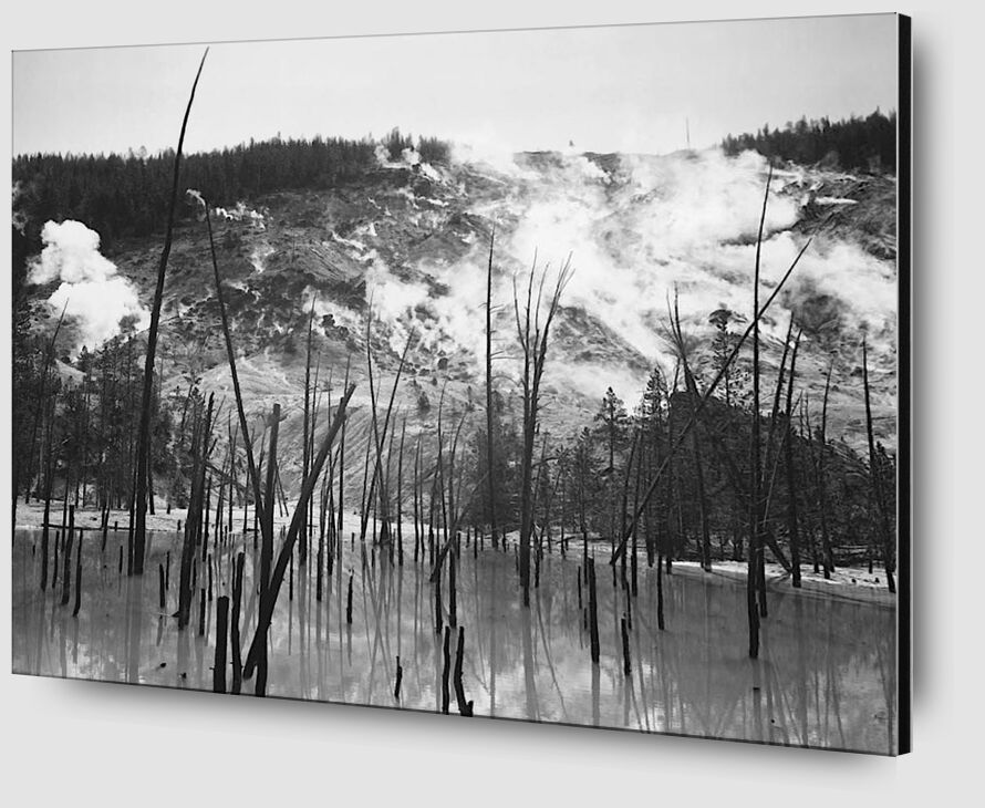 Rocky Mountain National Barren trunks in water near steam rising from mountains - Ansel Adams desde AUX BEAUX-ARTS Zoom Alu Dibond Image