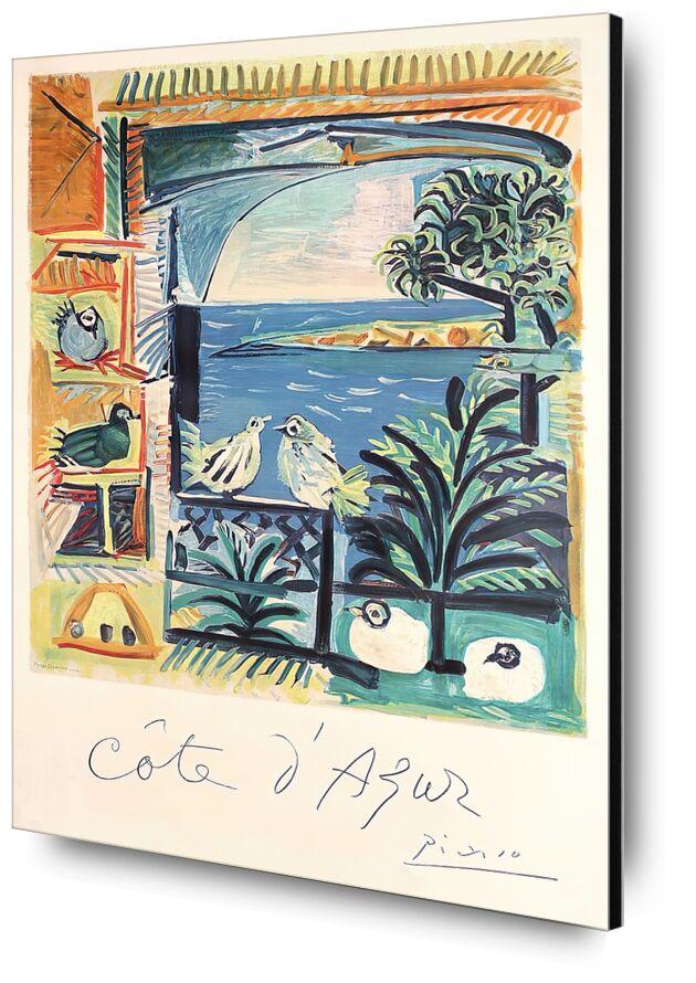 Côte d'Azur - The studio of Velazquez and his Pigeons - Picasso desde AUX BEAUX-ARTS, Prodi Art, picasso, palomas, Costa azul, Francia, taller de pintura