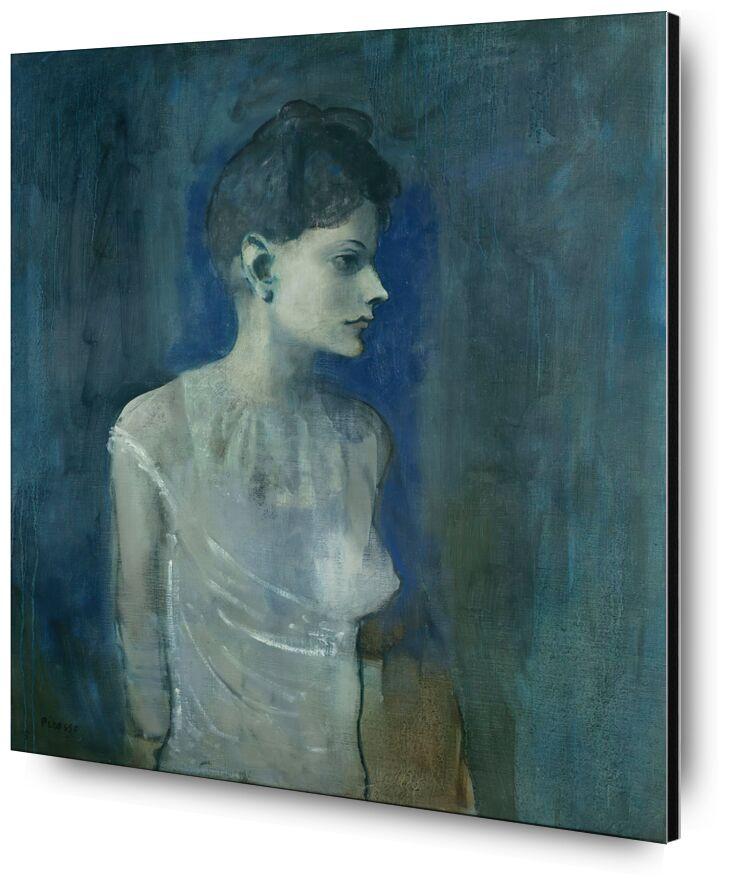 Girl in a Chemise - Picasso desde AUX BEAUX-ARTS, Prodi Art, picasso, pintura, niña, desnudo, desnudo