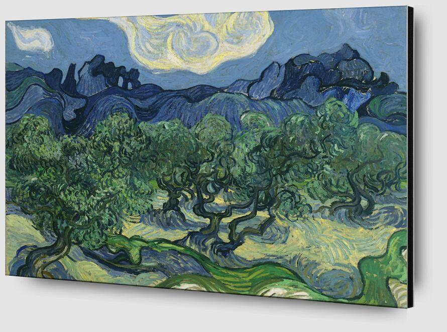 The Olive Trees - Van Gogh desde AUX BEAUX-ARTS Zoom Alu Dibond Image