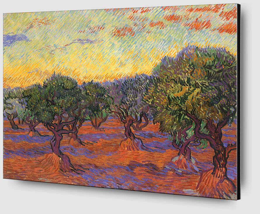 Grove of Olive Trees - Van Gogh from AUX BEAUX-ARTS Zoom Alu Dibond Image