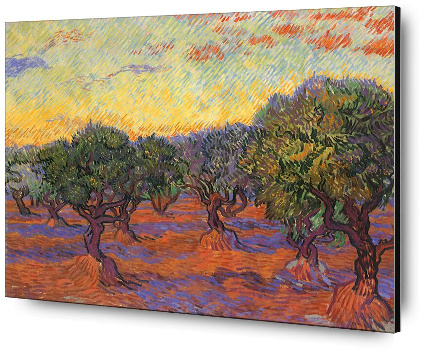 Grove of Olive Trees - Van Gogh from AUX BEAUX-ARTS, Prodi Art, Van gogh, olive grove, painting, nature, landscape
