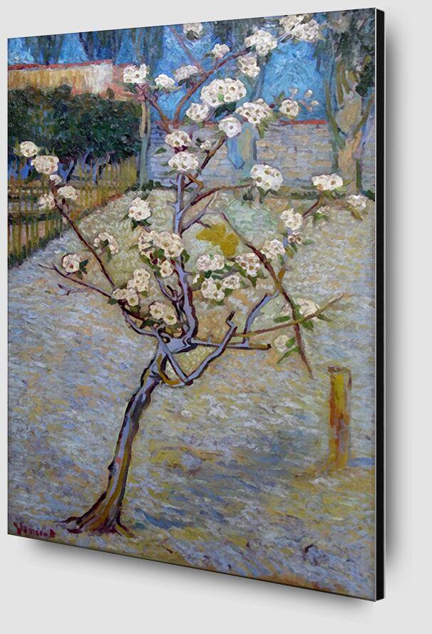 Peartree - Van Gogh from AUX BEAUX-ARTS Zoom Alu Dibond Image