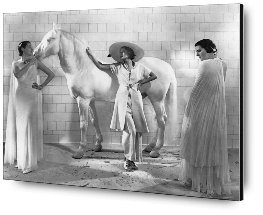 Vogue, January 1936 - Edward Steichen desde AUX BEAUX-ARTS, Prodi Art, Edward Steichen, mujeres, caballo, Moda, sombrero, vestido