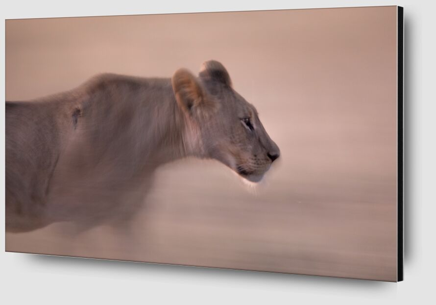 Fantôme du désert de Emilie Tournier Zoom Alu Dibond Image