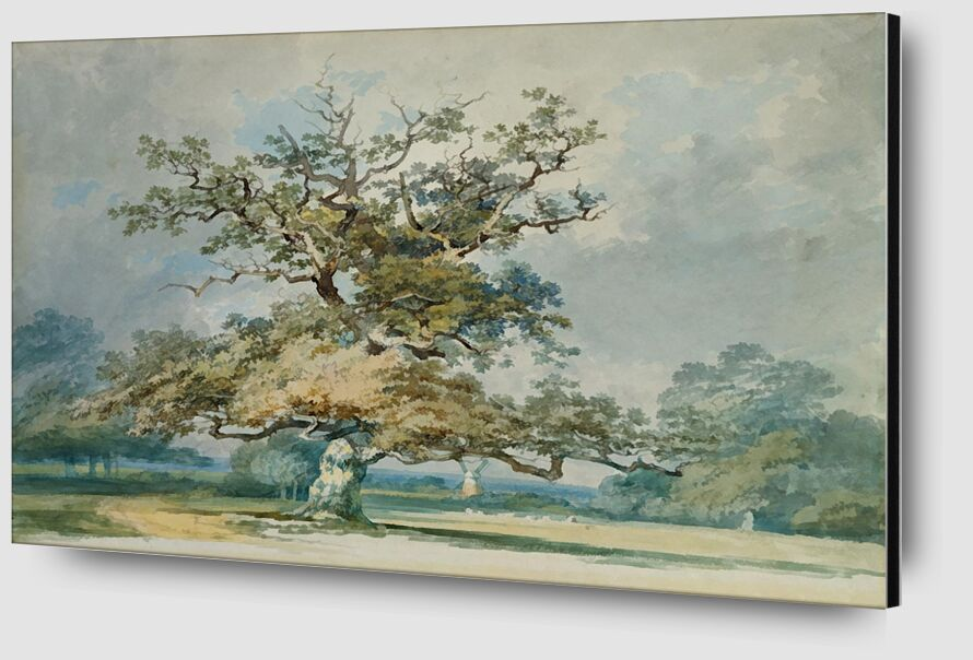 A Landscape with an Old Oak Tree - TURNER from AUX BEAUX-ARTS Zoom Alu Dibond Image