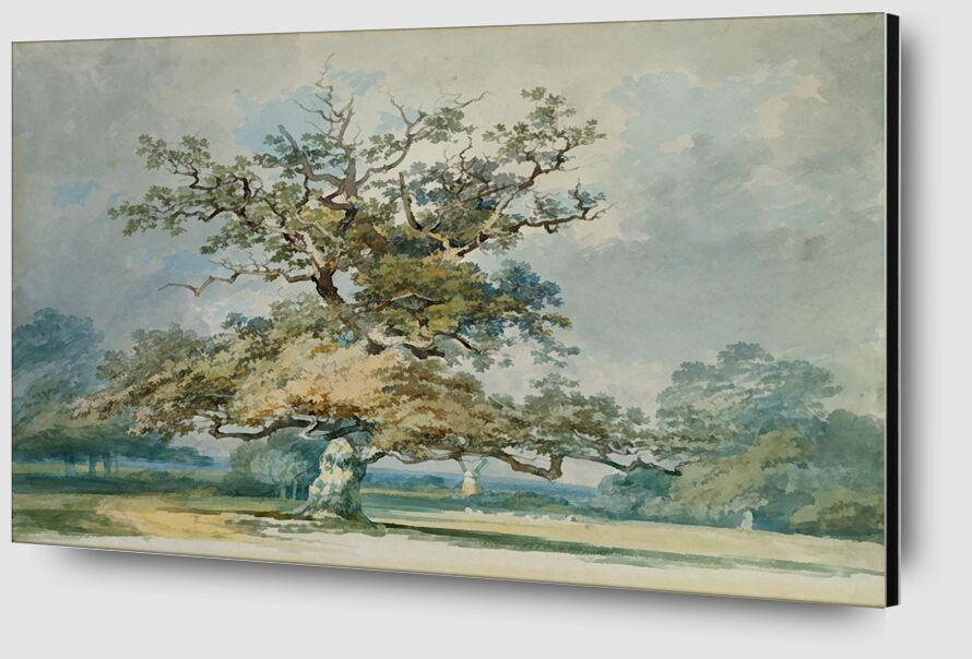 A Landscape with an Old Oak Tree - TURNER desde AUX BEAUX-ARTS Zoom Alu Dibond Image