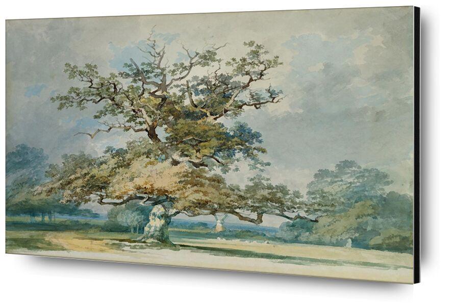 A Landscape with an Old Oak Tree - TURNER desde AUX BEAUX-ARTS, Prodi Art, TORNERO, árbol, hojas, paisaje, cielo, Roble