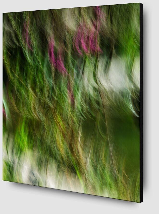 Le buisson ardent de Céline Pivoine Eyes Zoom Alu Dibond Image