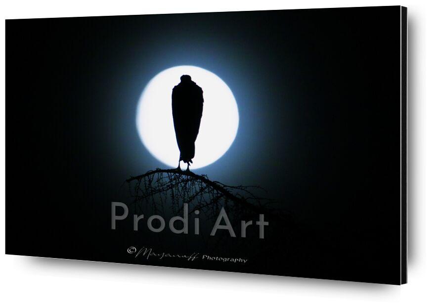 Silouhette in the moonlight from Mayanoff Photography, Prodi Art, full moon, tree, stork, birds, wild animals, night, moonlight
