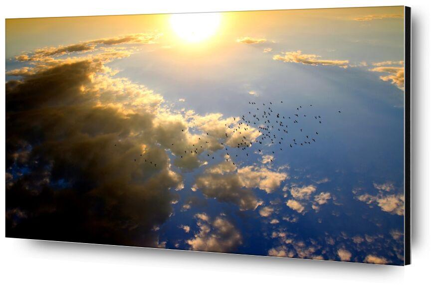 Vol au dessus du soleil de Pierre Gaultier, Prodi Art, couché de soleil, des oiseaux, nuage, soleil, ciel, rouge