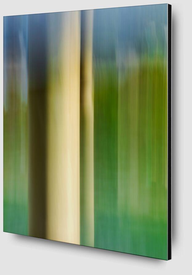 Le poteau d'amarrage de Céline Pivoine Eyes Zoom Alu Dibond Image