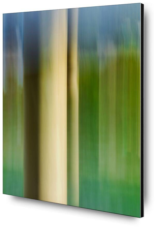 Le poteau d'amarrage de Céline Pivoine Eyes, Prodi Art, flou artistique, vert, art deco, tableau, Impressionnisme, art abstrait, Photographie abstraite, Mouvement intentionnel de la caméra, ICM, Poteau d'amarrage