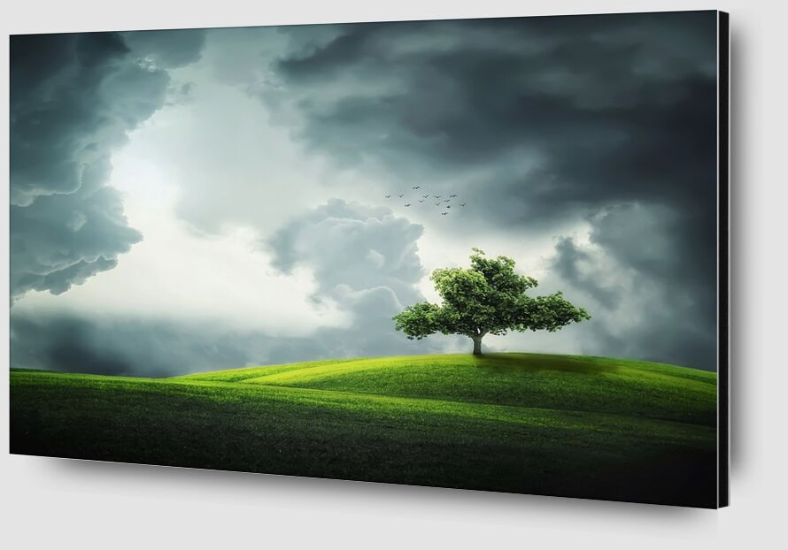 L'arbre de Pierre Gaultier Zoom Alu Dibond Image