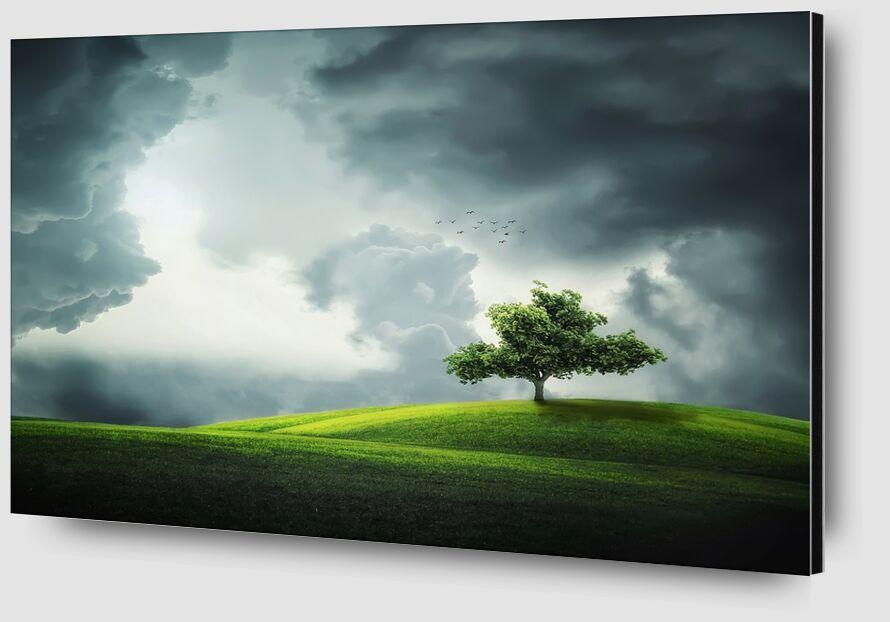 The tree from Pierre Gaultier Zoom Alu Dibond Image