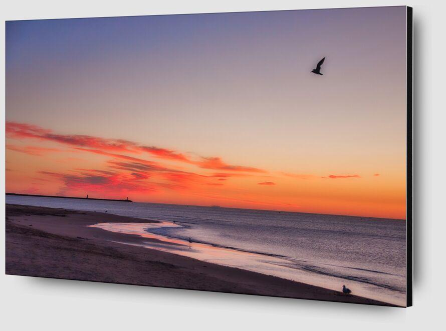La plage de Gruissan de Céline Pivoine Eyes Zoom Alu Dibond Image