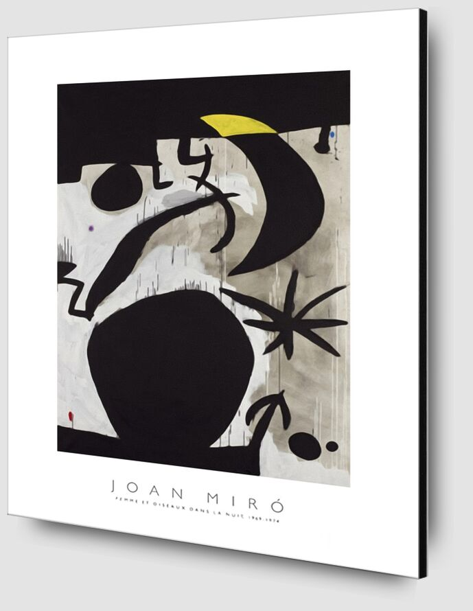 Women and Birds in the Night, 1969 - 1974 - Joan Miró from AUX BEAUX-ARTS Zoom Alu Dibond Image