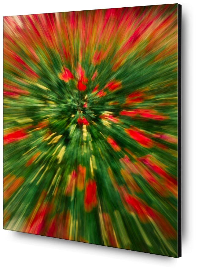 Le massif de fleurs rouges de Céline Pivoine Eyes, Prodi Art, Photographie abstraite, art abstrait, flou artistique, paysage, nature, fleurs, Mouvement intentionnel de la caméra, ICM