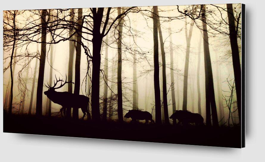 Silhouette de la forêt de Pierre Gaultier Zoom Alu Dibond Image