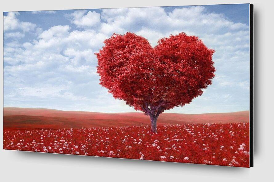 In the shape of heart from Pierre Gaultier Zoom Alu Dibond Image