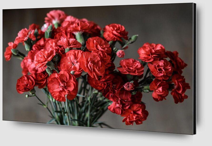 Bouquet of roses from Pierre Gaultier Zoom Alu Dibond Image