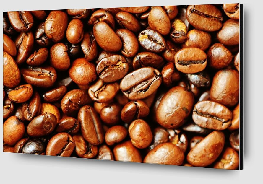Our coffee beans from Pierre Gaultier Zoom Alu Dibond Image